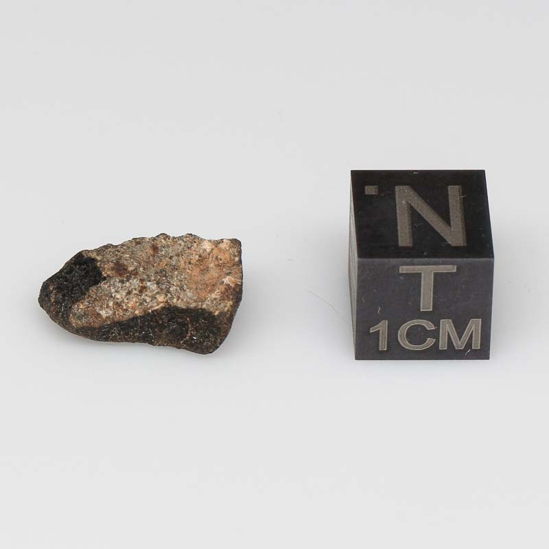 Camel Donga Meteorite For Sale CAMD-51
