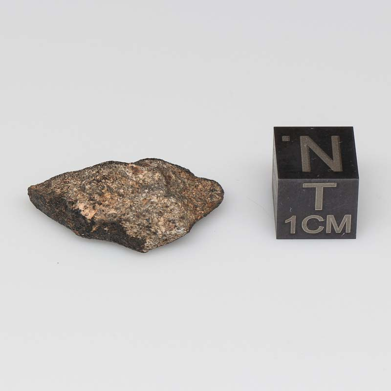 Camel Donga Meteorite For Sale CAMD-56