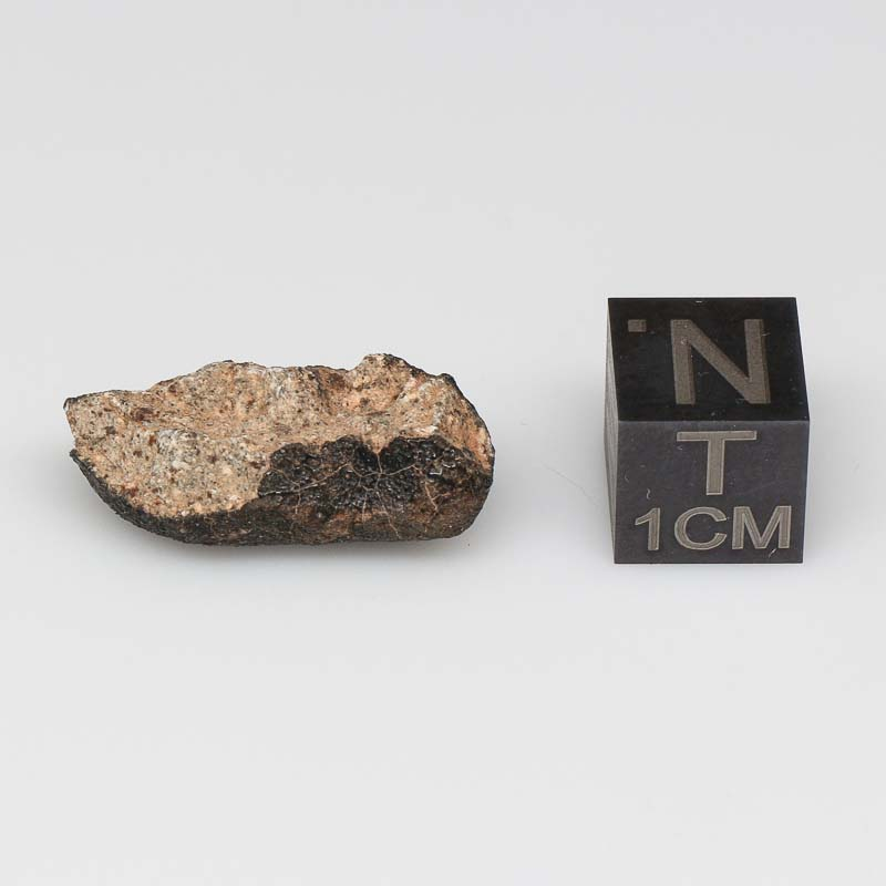 Camel Donga Meteorite For Sale CAMD-57