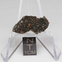 NWA 7678 Meteorite For Sale 7678-64