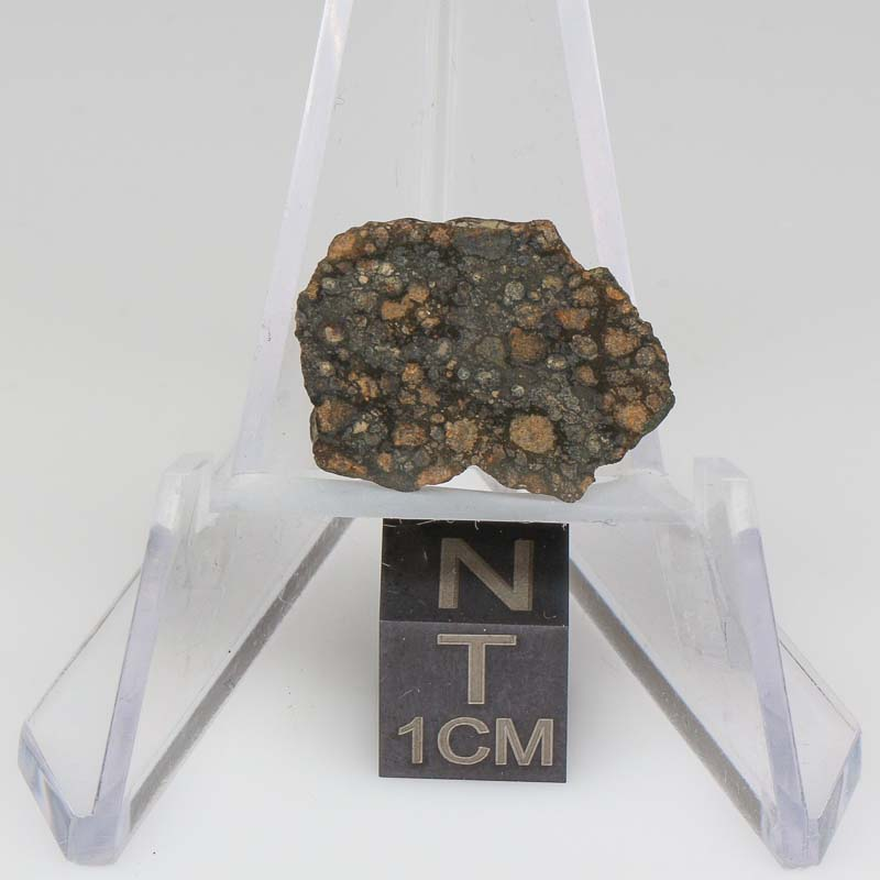 NWA 7454 Meteorite For Sale 7454-44