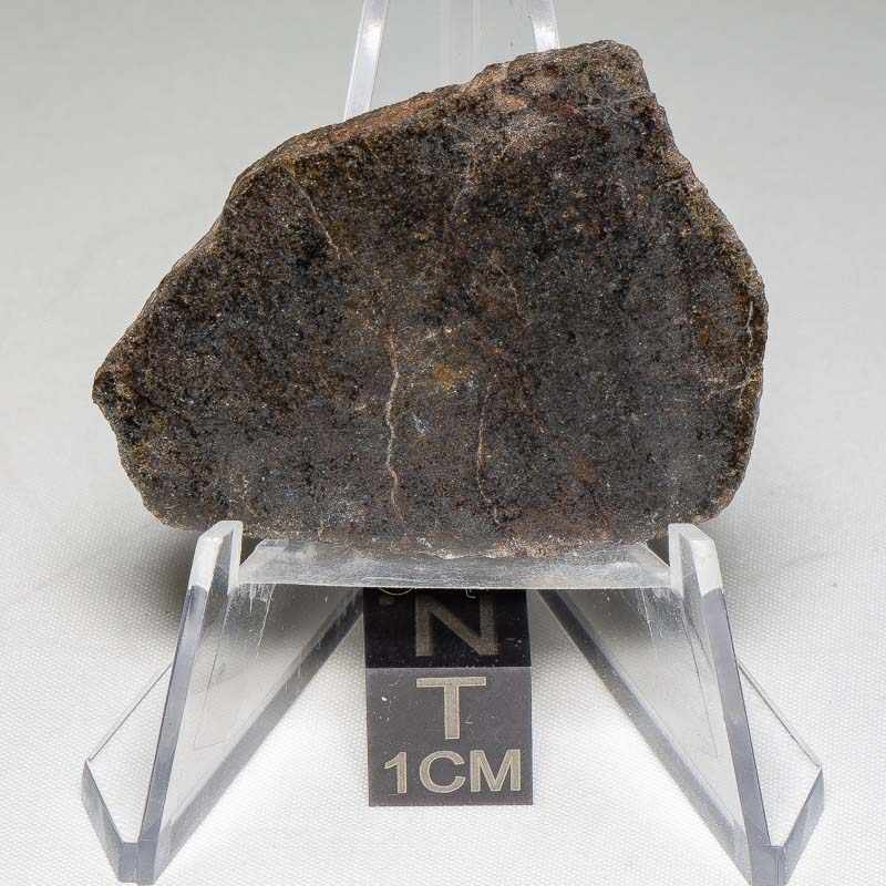 NWA 7499 Brachinite Meteorite 7.89g
