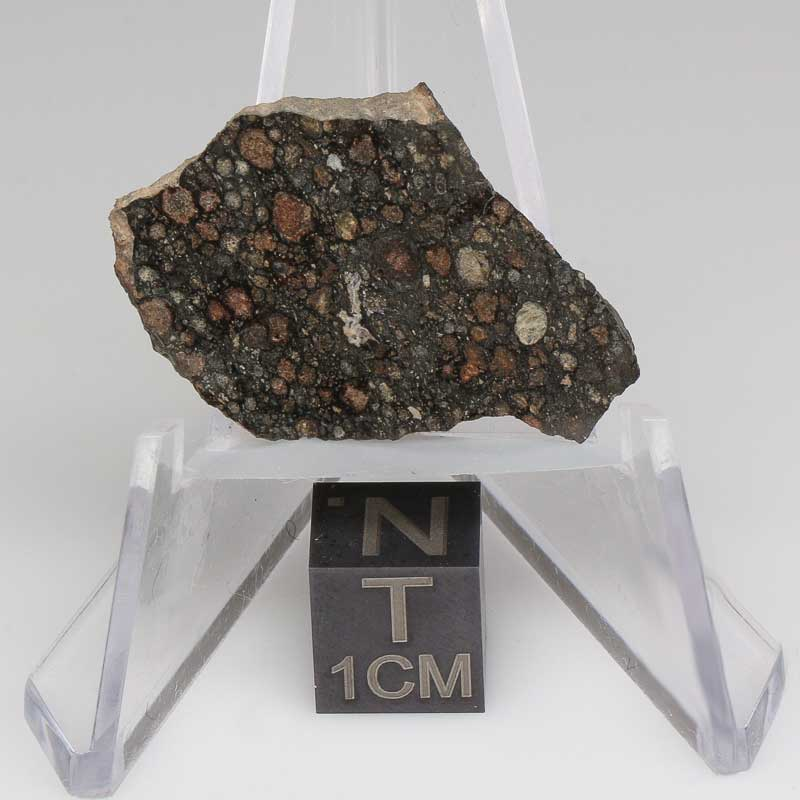 NWA 7678 Meteorite For Sale 7678-60