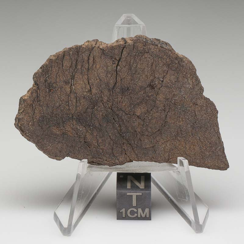 Al Haggounia 001 Meteorite For Sale ALH-39