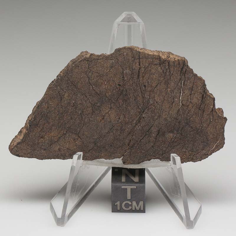 Al Haggounia 001 Meteorite For Sale ALH-40
