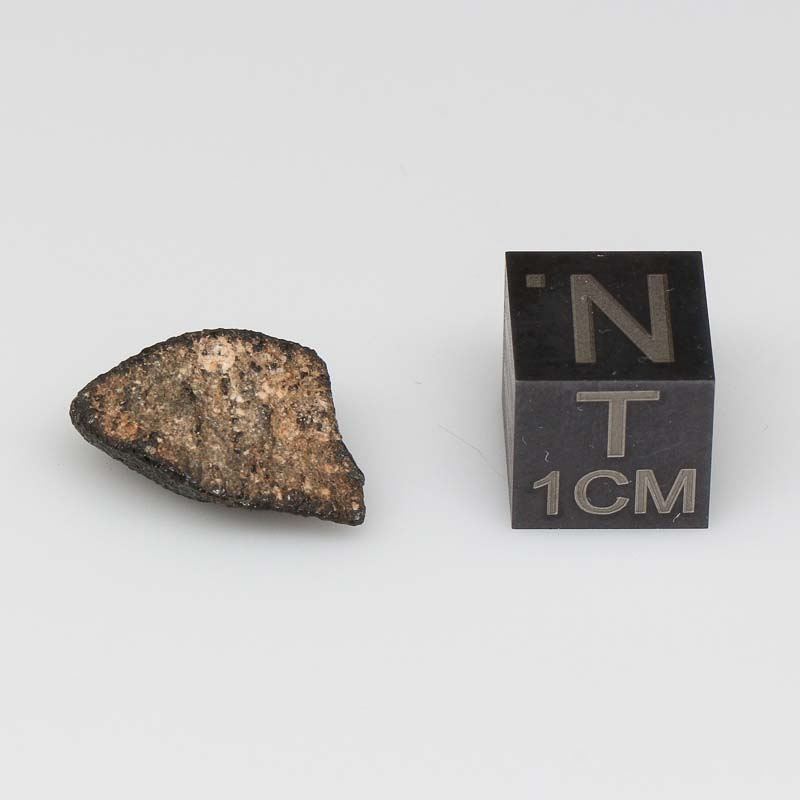 Camel Donga Meteorite For Sale CAMD-53