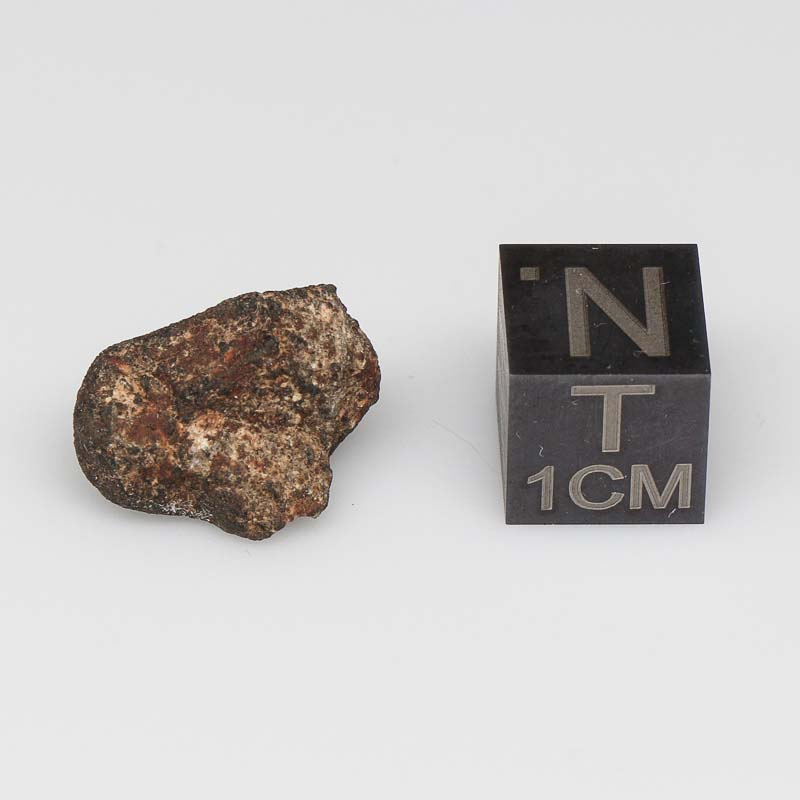 Camel Donga Meteorite For Sale CAMD-55