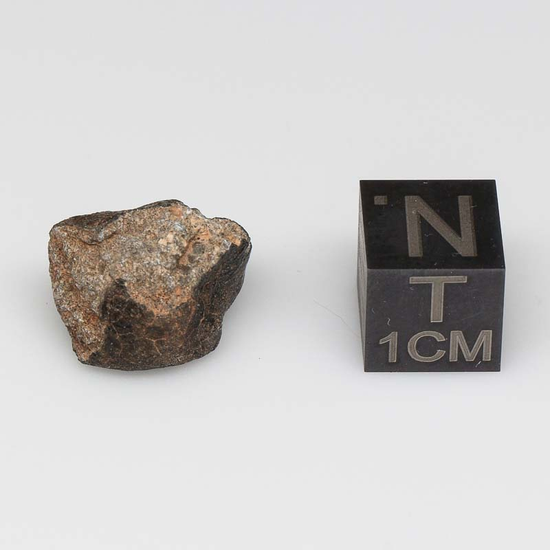 Camel Donga Meteorite For Sale CAMD-58