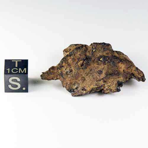 Whitecourt Meteorite 28.8g